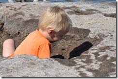 Joni digging