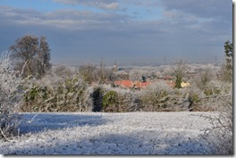 Snowy Baldock