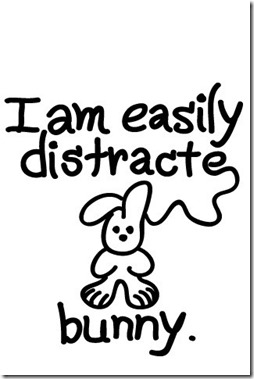 easily-distracted bunny